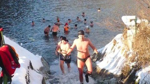 Motyčky – každú nedeľu o 10:30 – tréningy ľadových medveďov
